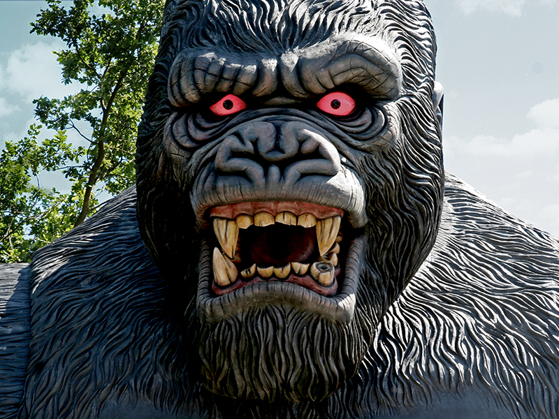 KING KONG | Huss Park Attractions